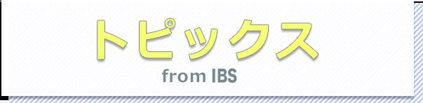 IBSのトピックス
